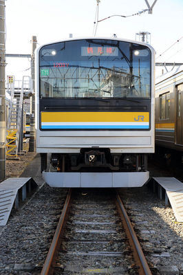 chibi_5O9A1321.jpg